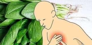 17 Magnezyum Deposu Yiyecekle Anksiyete, Depresyon Ve Kalp Krizine Karşı Önlem Alın