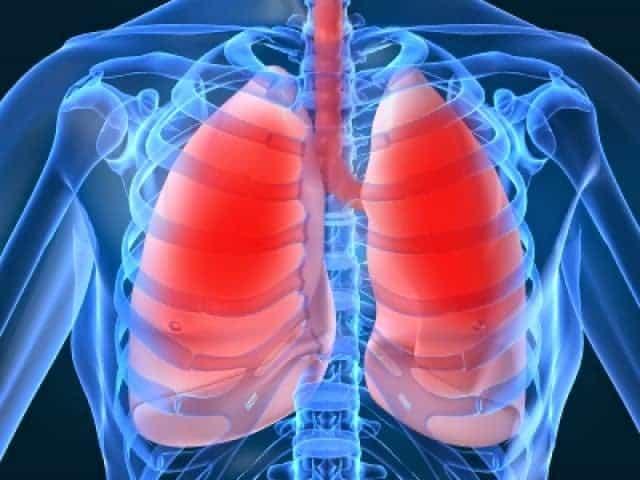 Akciğerleri Temizleyen 6 Besin