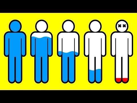Bir günlüğüne su içmeyi bırakırsanız vücudunuzda neler olur?