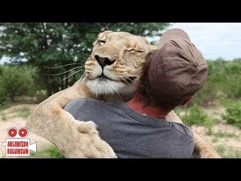 İnsanların hayatını kurtaran  10 hayvan