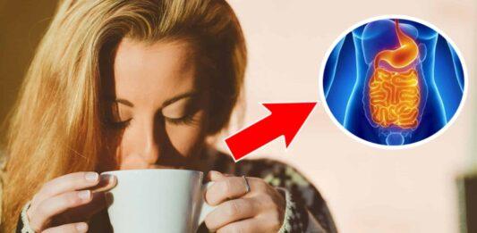 Her Gün 1 Bardak Çay İçerseniz Vücudunuza Ne Olur!