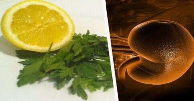 Limon ve Maydanozla Böbreklerinizi Arındırın
