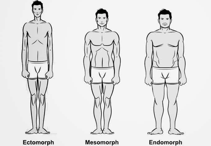 Endomorf vücut tipine sahip kişiler nasıl beslenmelidir?