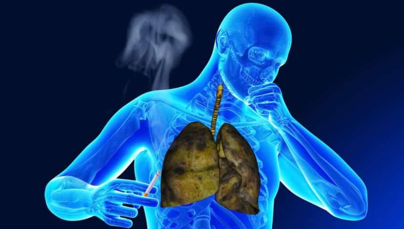 Ciğerlerinizi temizleyerek hemen zehri atmaya başlayın!