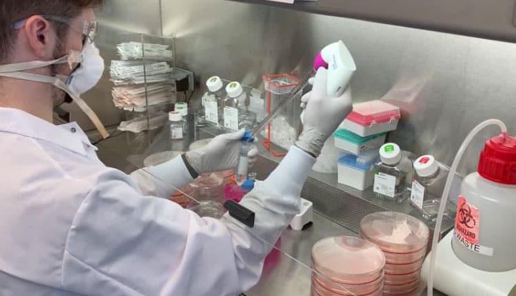 Ebola virüsünü tedavi eden antikor bulundu