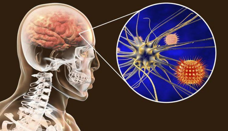Koronavirüs beyni 10 yıl yaşlandırıyor! IQ seviyesini düşürüyor