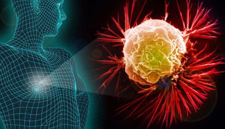 Lyme bakterileri meme kanserine neden olur mu?