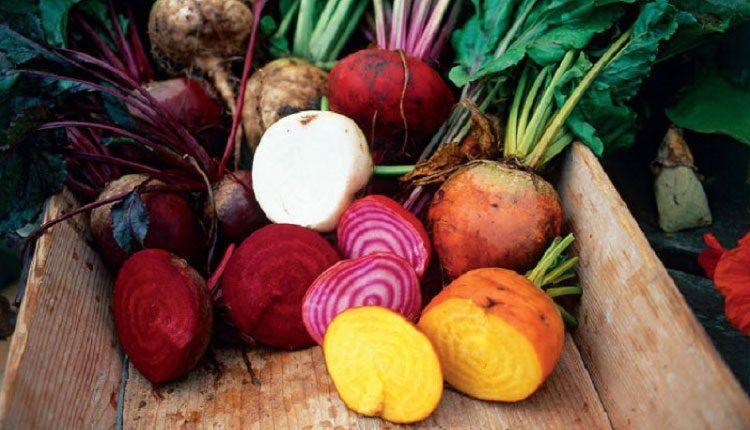 Hızla kilo verdiren kök bitkiler nelerdir?