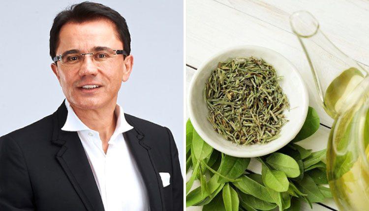 Dr. Ender Saraç'tan metabolizmayı hızlandıran, iştah kesen çay tarifi