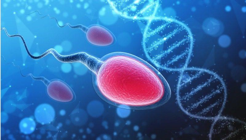 Covid-19 enfekte olan erkeklerde kısırlık riski