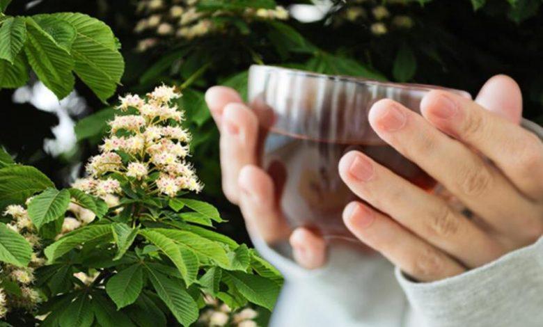 Antioksidan deposu kestane çiçeği çayı balından daha faydalı