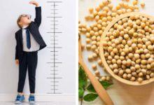 Çocuklarda boy uzatan yiyecekler neler?