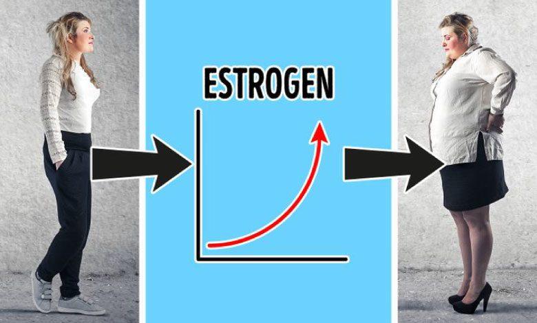 Hangi hormonlar kilo aldırır, kilo vermeyi engeller?
